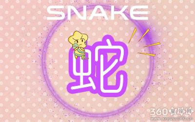 属蛇2001最好命男孩子