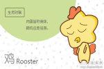 出生年算命 1993年属鸡是什么命婚配表