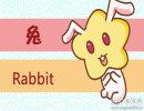 属兔女自作多情的表现是什么