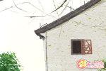 藏文化建筑 碉房是什么样的