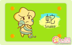 呆滞的属蛇男为什么会那么可爱