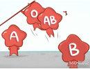 这四大血型在爱情中懂得换位思考