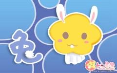 属兔人职场上遇到什么会经常发脾气