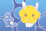 属兔婚配 属兔的配什么属相最好