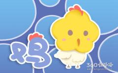 看看鸡年是什么年 生肖鸡的最新解析