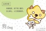 属狗人出生月的命运 属狗的几月出生最不好