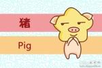 属猪人出生月的命运 属猪的几月出生最不好
