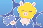 2019年最全的猪宝宝乳名分析