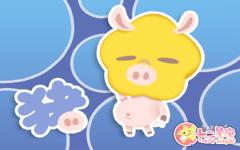 生肖猪从事什么总能够自成一派