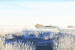 立冬和冬至有什么区别 哪些方面不同
