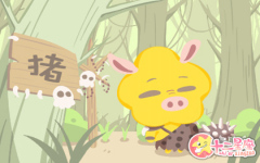 猪年吉祥物是什么 属猪的带什么吉祥物好
