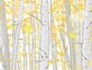 海棠花最古老的传说是什么_你了解么
