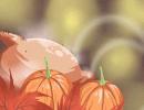感恩节的意义是什么 有哪些活动习俗