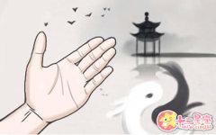 手指关节明显的手相会有什么预示