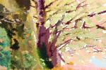 庭院风水种树 种些什么树好