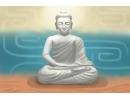 正月菩提和星月菩提的区别 哪个菩提好