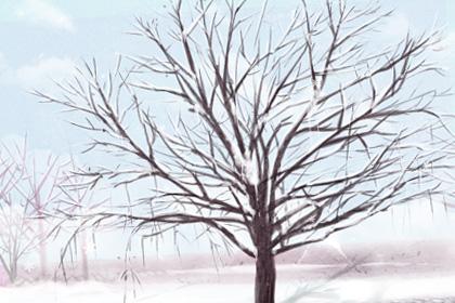 冬至祝福语简短 送给亲朋好友最好的祝福