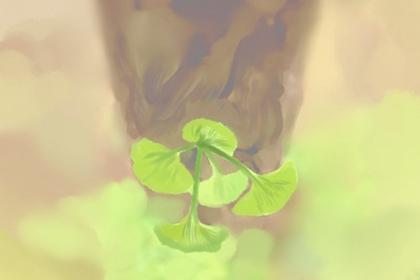 一个绿萝七个鬼是什么意思 绿萝适合摆在哪里