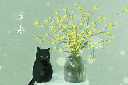 打春是哪天 2019立春是农历几月几日