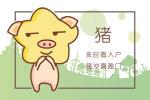 2019猪年公司祝福语 步步高升的祝福
