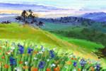 春季养生要点是什么 春季养生有注意什么