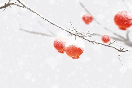 2019日本樱花什么时候开 围观日本赏樱攻略