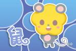 十二生肖本周运程(2019.3.5-3.11)