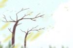 关于植树节的宣传标语 植树节标语介绍