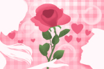 七夕送什么花表白好 情人节送花攻略大全