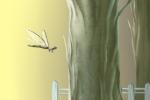 春分立蛋的原理是什么 有什么科学依据