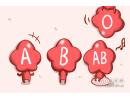 四大血型会在什么时候心灰意冷