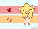 四月出生的属猪人命运 命好不好
