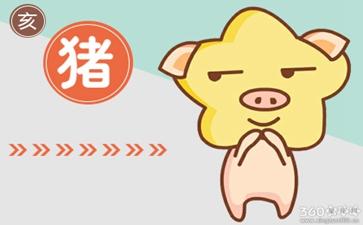 猪属猪十月出生的人命运 命运怎么样
