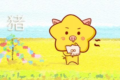 属猪十一月出生的人命运 运势怎么样