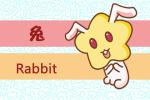 生肖解析87兔今年运势 属兔人2019运势
