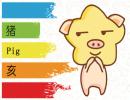 农历二月出生的猪宝宝运势 2019猪宝宝命运
