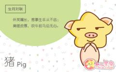 出生在木猪年好不好 木猪年的人命好吗