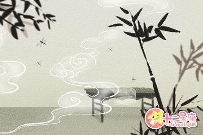 龙竹养在什么地方招财 水养龙竹的寓意