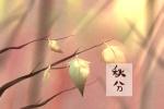 关于秋分的著名诗句 什么是秋分