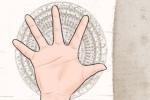 手指又尖又长的手相很有福气吗