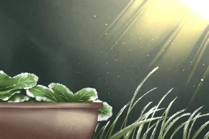 霜降节气祝福语 祝福语大全