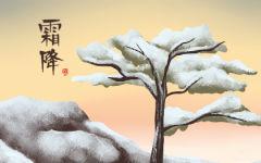 关于霜降的谚语或俗语 霜降的谚语歌谣