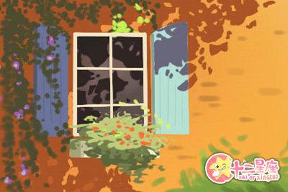 家里猫狗一起养对风水有影响吗