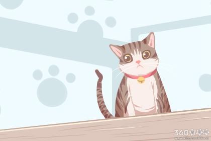 怀孕梦到猫是什么意思 有什么含义