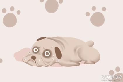 女人做梦梦到狗追咬是什么意思