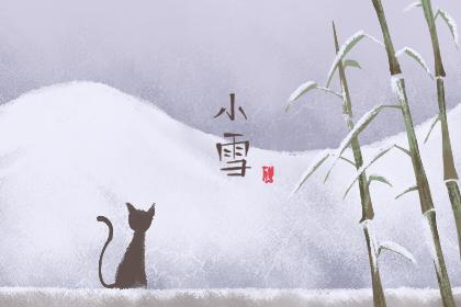 2019年小雪图片大全 小雪图片风景