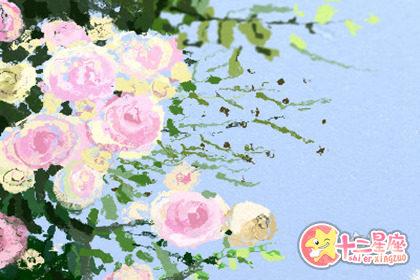 玫瑰别乱种 种的地方不对招烂桃花还招小人