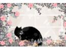 做梦梦到黑猫是什么意思 有什么含义