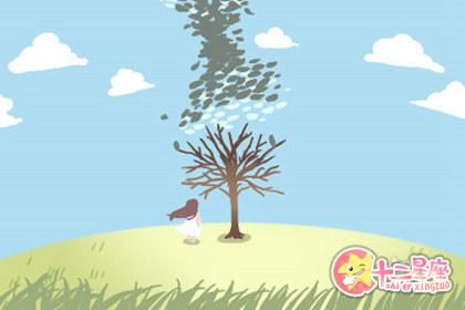 桑柘木命和什么命相克 金和木是相生还是相克