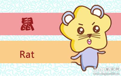 家里有老鼠有什么预兆 老鼠进家的风水说法